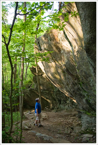 This giant rock wall can be found on the descent along the Frasier Discovery Trail