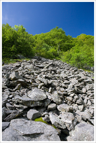 This is the talus slope where we first spotted the peregrine falcons.