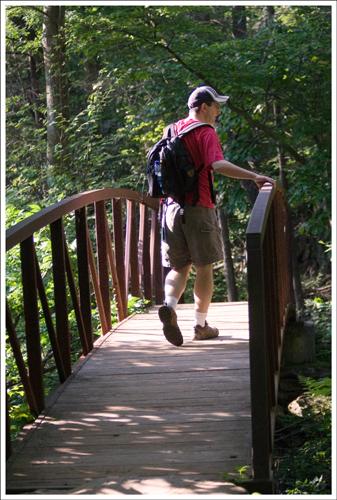 A footbridge across the stream.