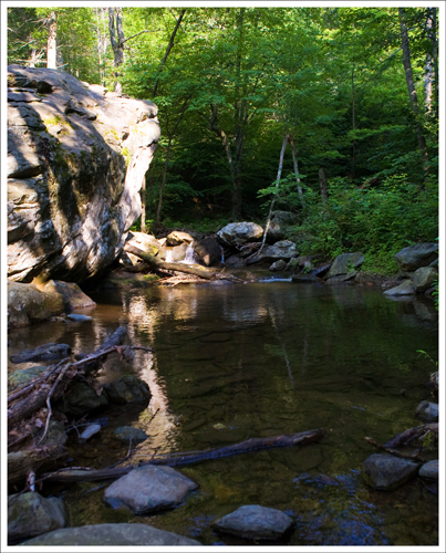 A pool along the White Oak Canyon stream.