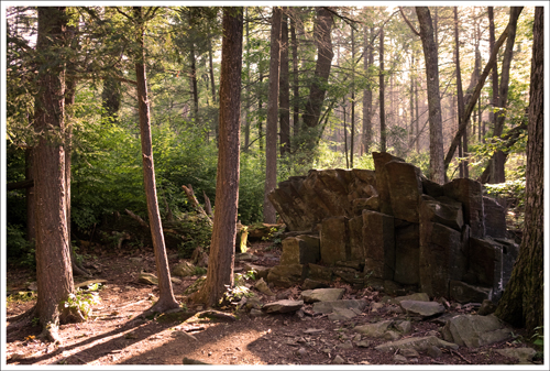 This rock formation sits at the junction of the Limberlost and the White Oak Canyon trail.