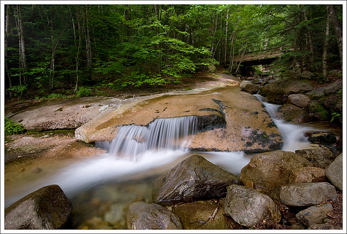 Franconia Notch State Park (NH) is home to many spectacular streams and waterfalls. Don't miss visiting Flume Gorge!
