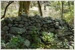 hog wall