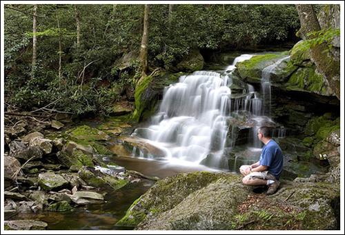 "There are several ""falls of Elakala"" along Shays Run."