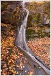 The water was low in Jones Run Falls