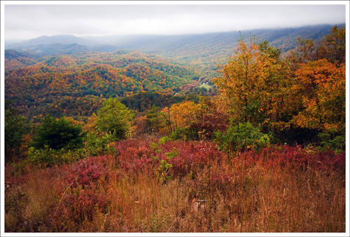 The view from the top was obscured by fog and clouds, but it was still beautiful with all the fall color.