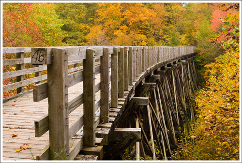 The trestle supports are very picturesque/