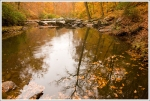 Quantico Creek in the fall.