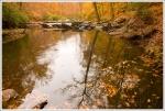 Quantico Creek in the fall.
