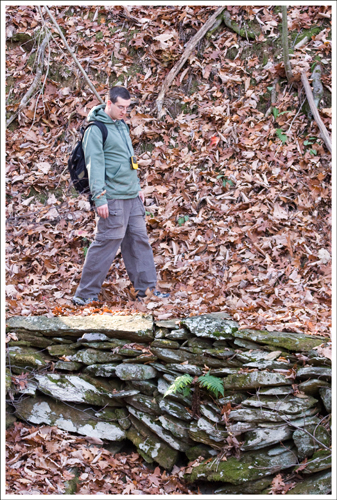 The trail was covered with dry, brown leaves.