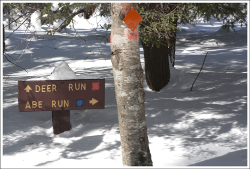 Abe Run, Mill Run and Deer Run create a series of interconnected loop trails.