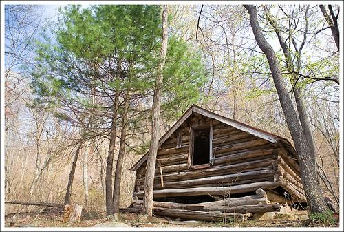 The Nicholson Cabin