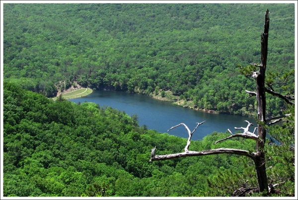 View of Douthat Lake from Beards Mountain