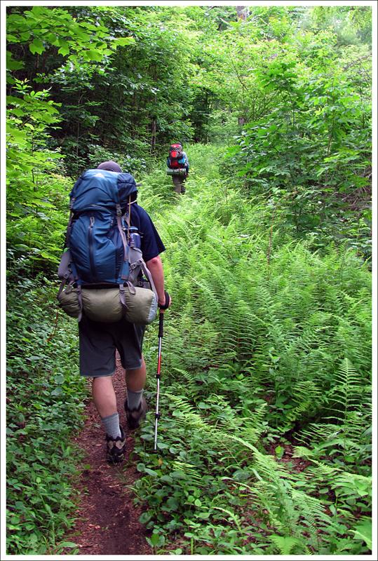 On the Hazel Mountain Trail