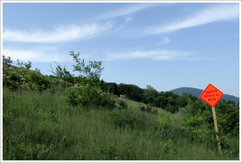 Appalachian Trail Skyland To Big Meadows Virginia