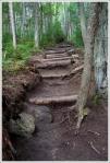 Arethusa Trail