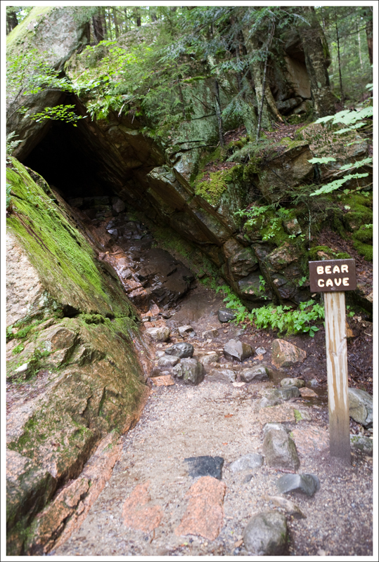 Bridge Red Gorge Natural River