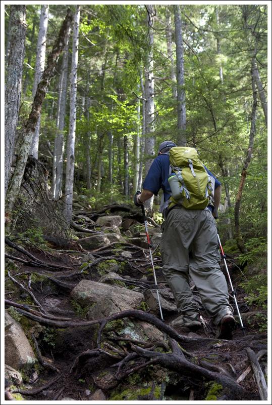 Bemis Trail