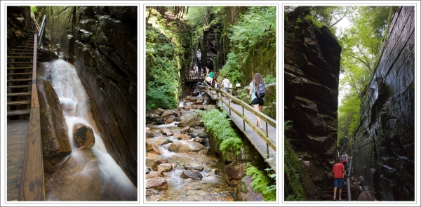 Scenes from the Flume