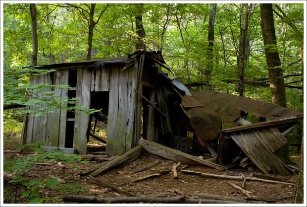 Pocosin Mission Ruins