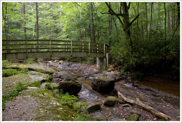 Bridge Over Hills Creek