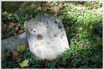 Headstone in Fox Hollow