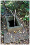 Old boxed spring on the Fox Hollow Trail