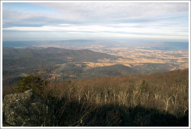 Blackrock View