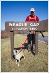 Beagle Gap Trail Sign