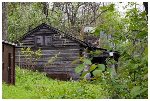 Pocosin Cabin