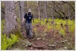 Trail Down to Bearfence Hut