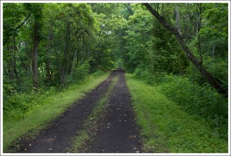 Image result for trail system pulaski va