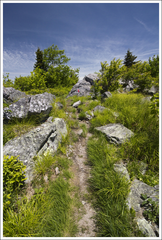 Trail Leaving Little Pinnacle