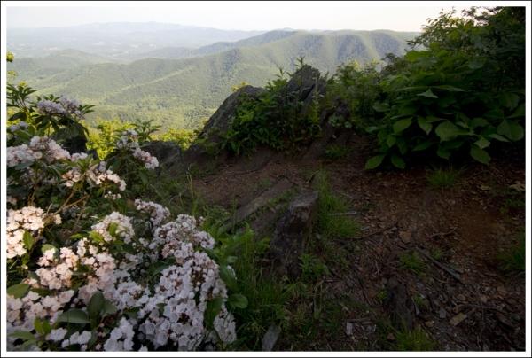 Rocky Knob Virginia Trail Guide