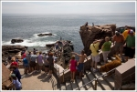 Crowds at Thunder Hole