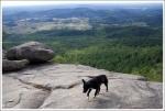 Beggar on the Mountain