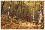 Albright Trail