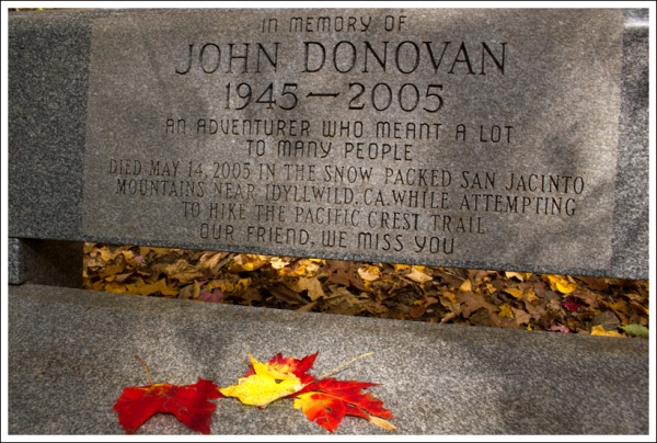 John Donovan Bench