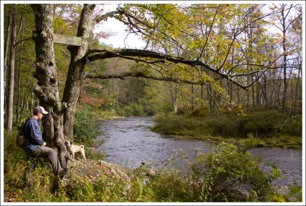 Along the Blackwater River