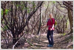 Christine Hikes Through Old Mountain Laurel
