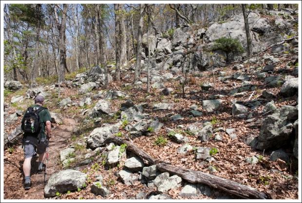 Adam Hiking Along the Rocky Appalachian Trail