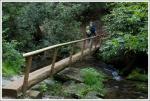 Another log bridge