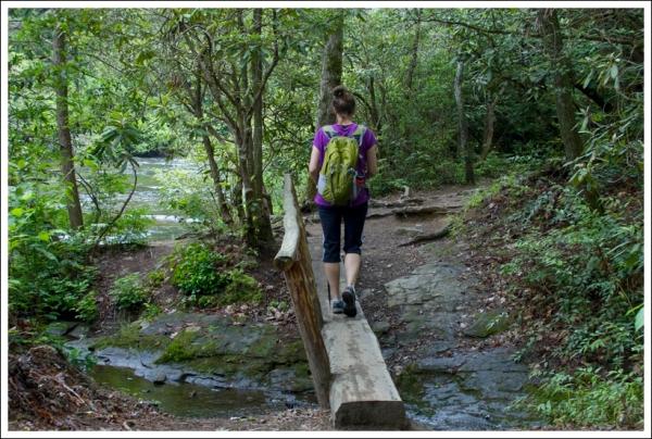 Christine Crosses the Log Bridge