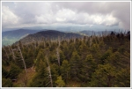 Another View from Clingmans Dome