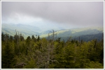 View from the Clingmans Dome Parking Area