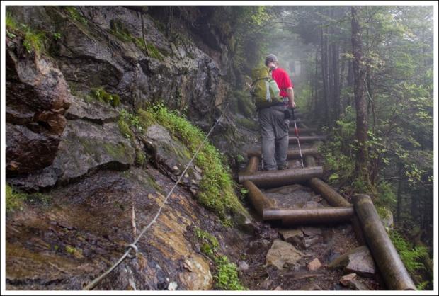 Hiking Up Log Stairs