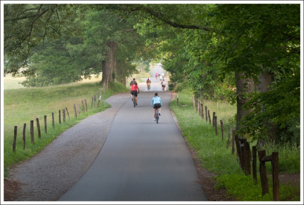 Cyclists in Cades Cove