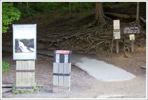 Laurel Falls Trailhead