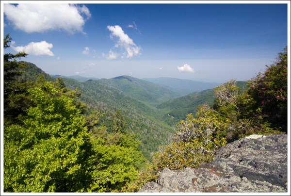 The View from Chimney Tops