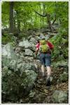 Adam Climbs a Rocky Uphill Section of the Massanutten Ridge Trail